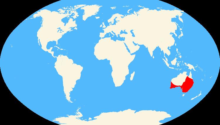 Australian Raven map