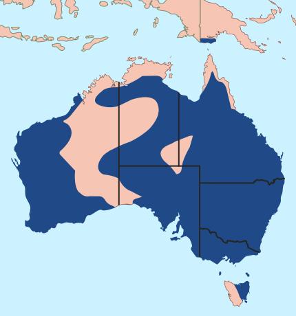 Australian_Magpie_-_distribution