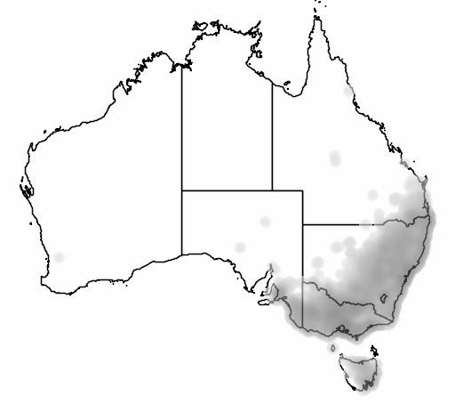 Eastern Rosella map