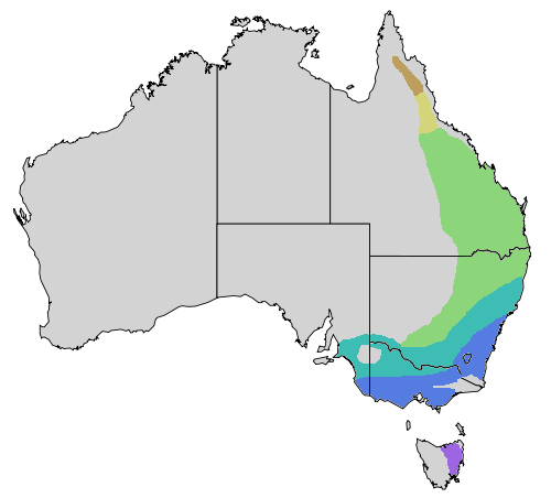 Noisy miner map