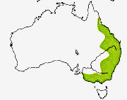 eastern-yellow-robin-distribution-map_