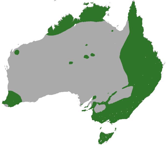 Common_Brushtail_Possum_map