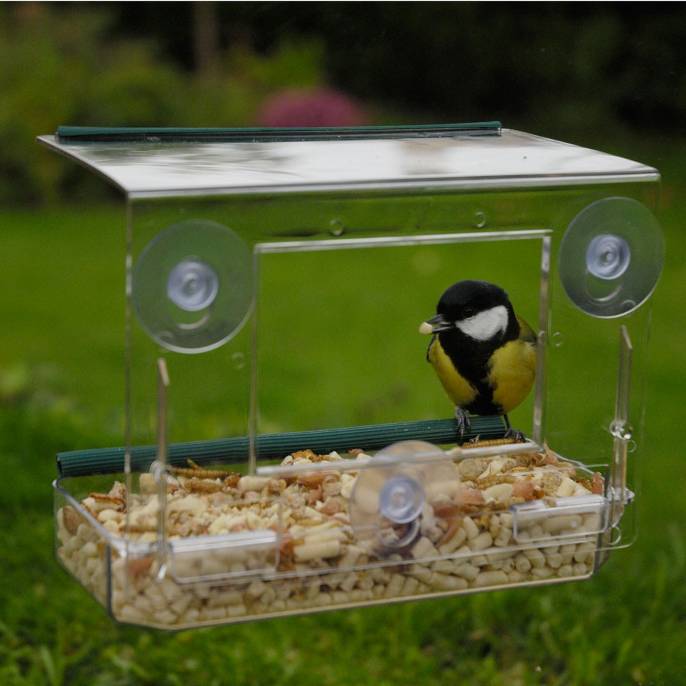 Window bird feeder