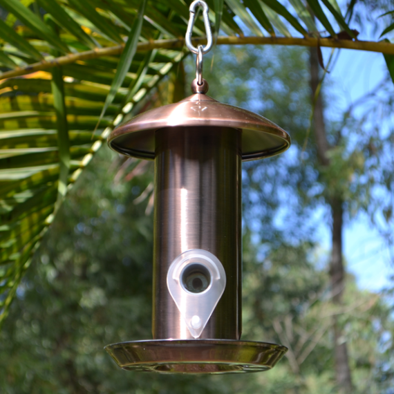 Chic-Tube-Feeder-(Copper)-Solid-Featured