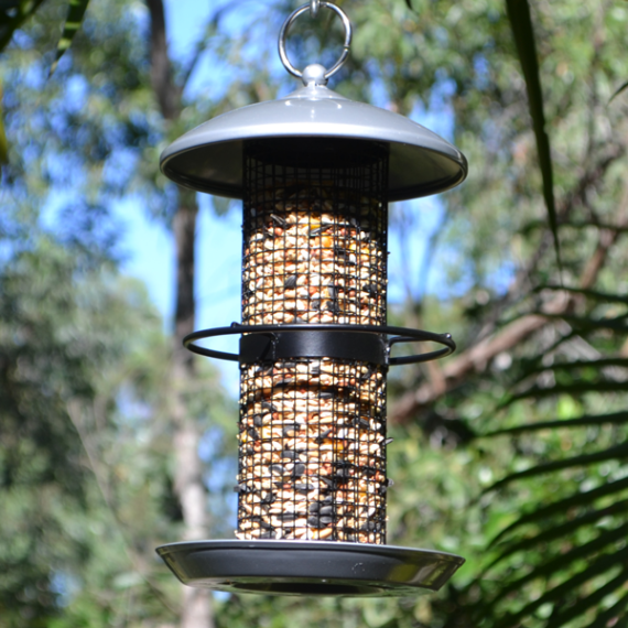 Chic-Tube-Feeder-(Silver)-Featured