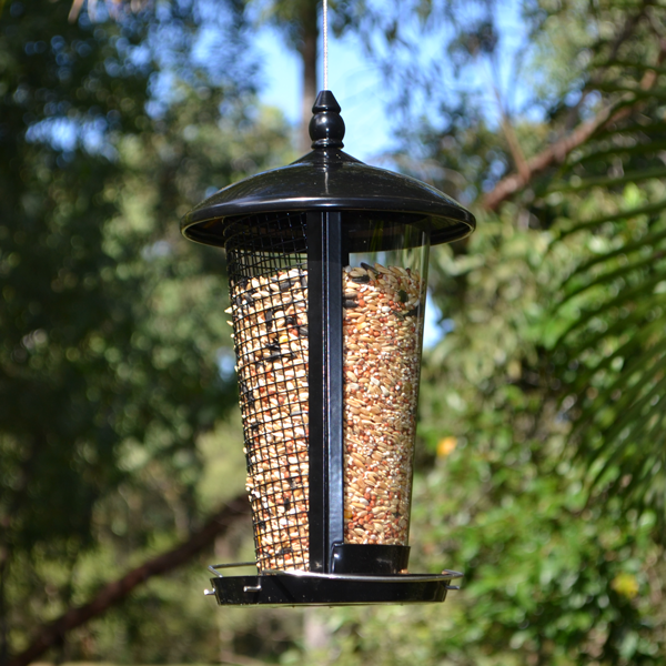 Dual-View-Feeder-(Black)-Featured