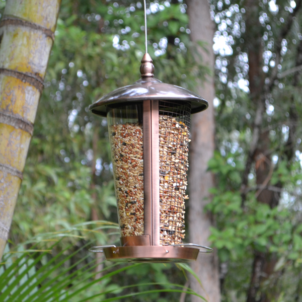 Dual-View-Feeder-(Copper)-Featured