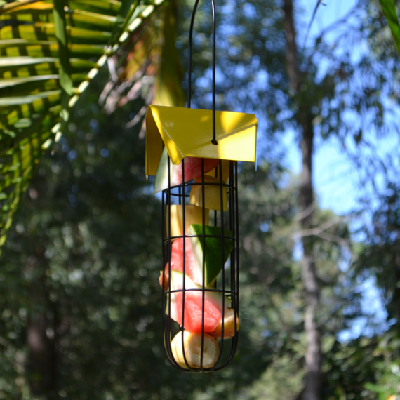 Fruit-Tube-Feeder-(Yellow)-Featured