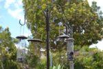Bird Feeding Station 5