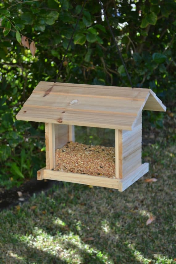 Wooden Bird Feeder for Australian wild birds Cafe Feeder image 5