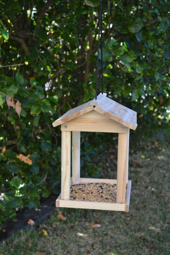 Wooden Bird Feeder for Australian wild birds Pavilion Feeder image 5