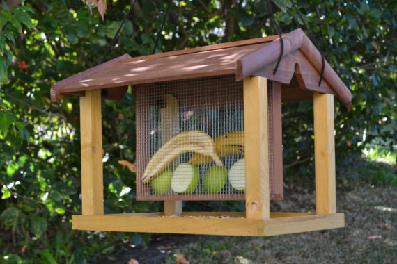 Wooden Bird Feeder for Australian wild birds Mansion Feeder image 1