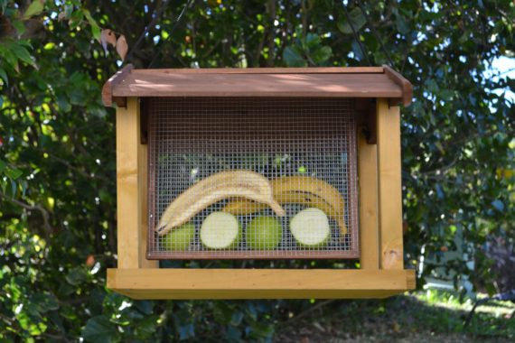 Wooden Bird Feeder for Australian wild birds Mansion Feeder image 2