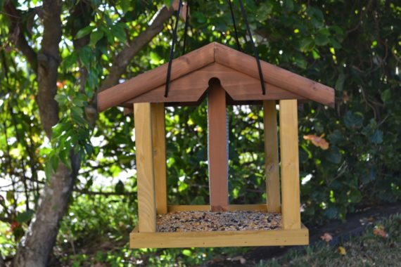 Wooden Bird Feeder for Australian wild birds Mansion Feeder image 3